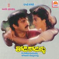 Image result for Thodi Kodallu (1994)